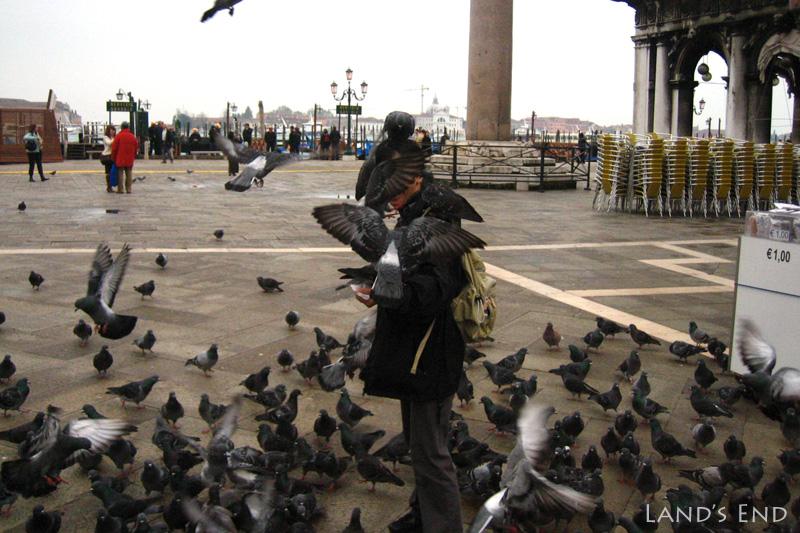 サン・マルコ広場でハトとたわむれる